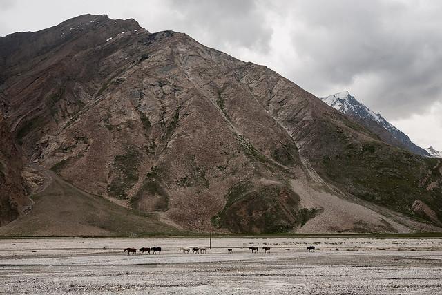 En Route to Zanskar Valley