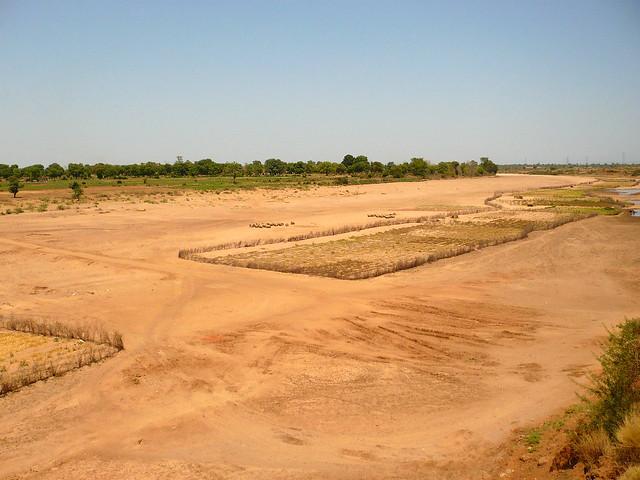संकट में दूधी नदी