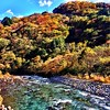 Beautiful #autumn colors in #nikko