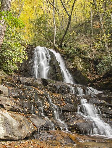 longexposure autumn fall nature water tennessee foliage waterfalls forests greatsmokymountainsnationalpark laurelfalls gsmnp