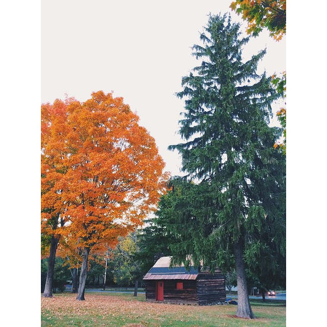 Hello upstate New York! #jhoppicksapples #ejlnyc14 #vscocam #latergram #pumpkin