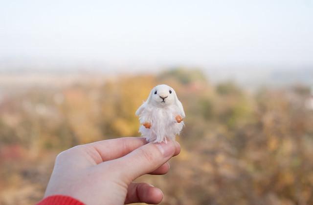 tiny fluffy bunny