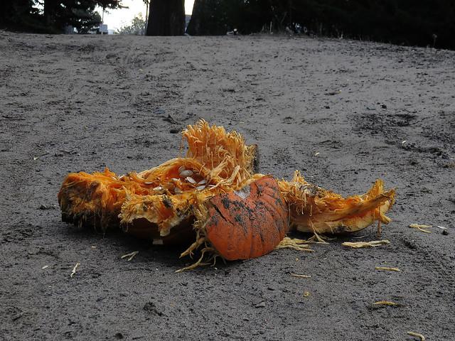 Smashed pumpkin in Golden Gate Park, San Franisco (2014)