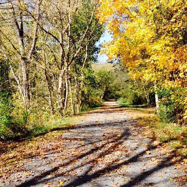 Jackson River Scenic Trail