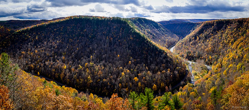 unitedstates pennsylvania grand canyon foliage wellsboro
