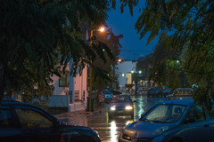 Βραδινή καταιγίδα Ψίνθος