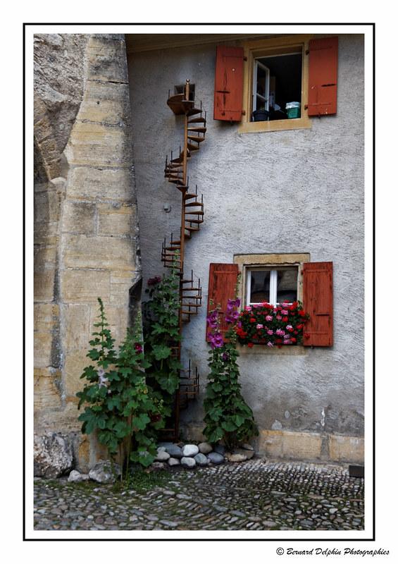 Un escalier privé pour le chat de la maison