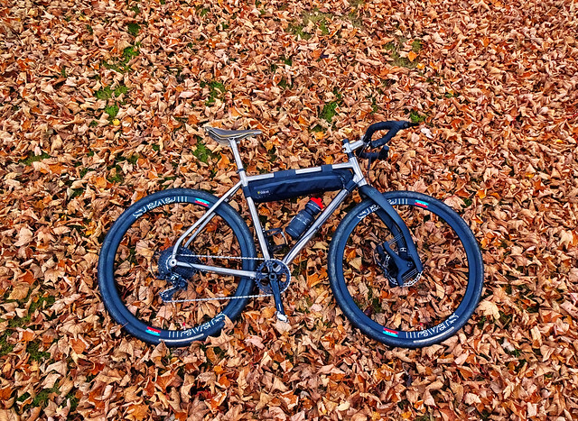 6 11 Autumn ride out