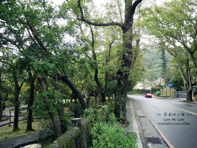 陽明山一日遊景點推薦前山公園 (44)