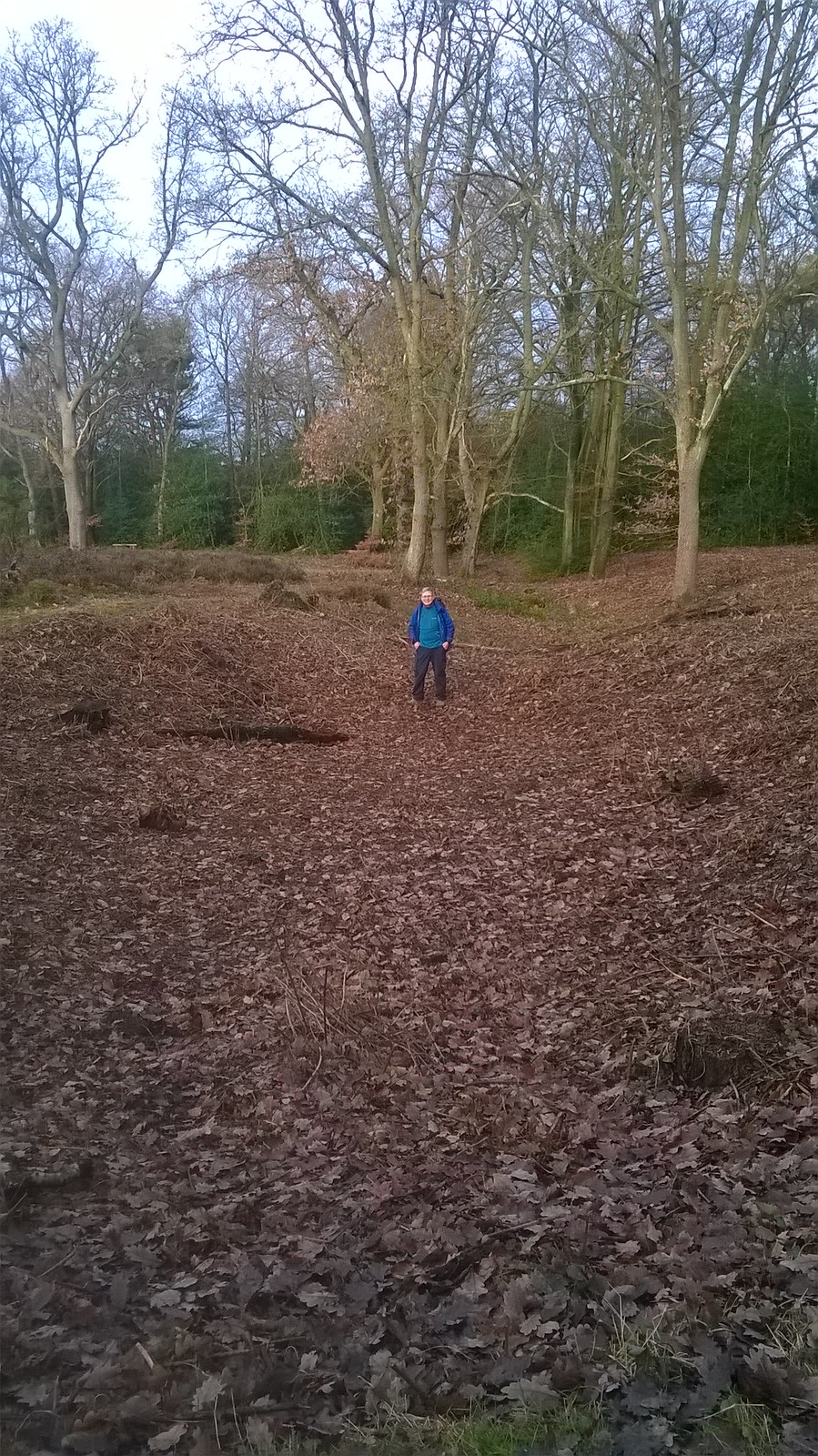 Iron age ditch West Wickham Common