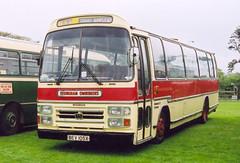 Hastings Bus Rally.