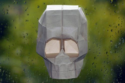 Origami Skull (Hojyo Takashi)