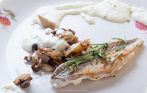 2014 Oct Culinary-34.jpg