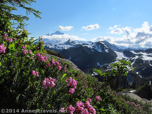 Mt. Baker views from Artist Ridge, Mount Baker-Snoqualmie National Forest, Washington