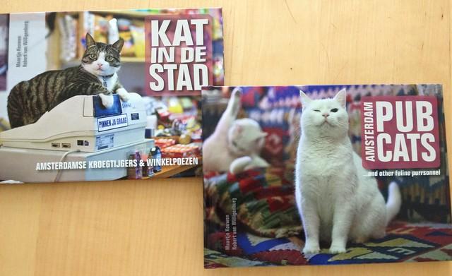 Kat in de Stad (Amsterdam)