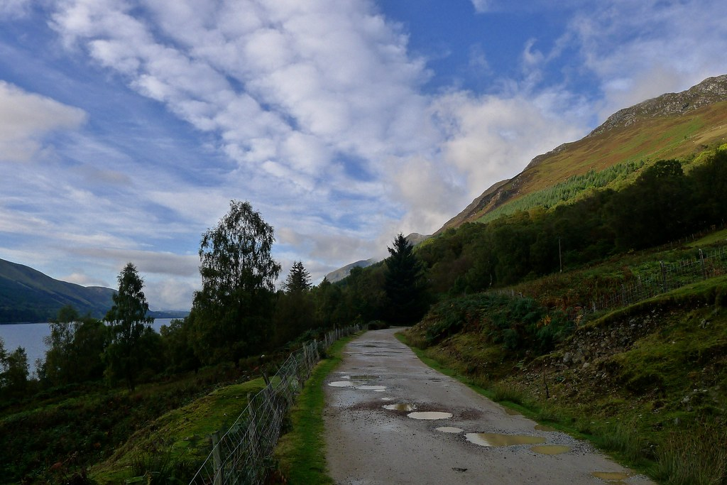 The forest road above Loch Lochy