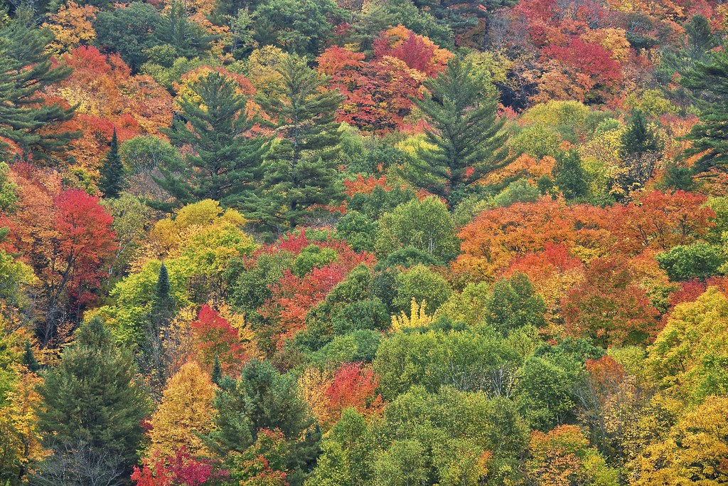 landslide valley colours, sault ste. marie, ontario