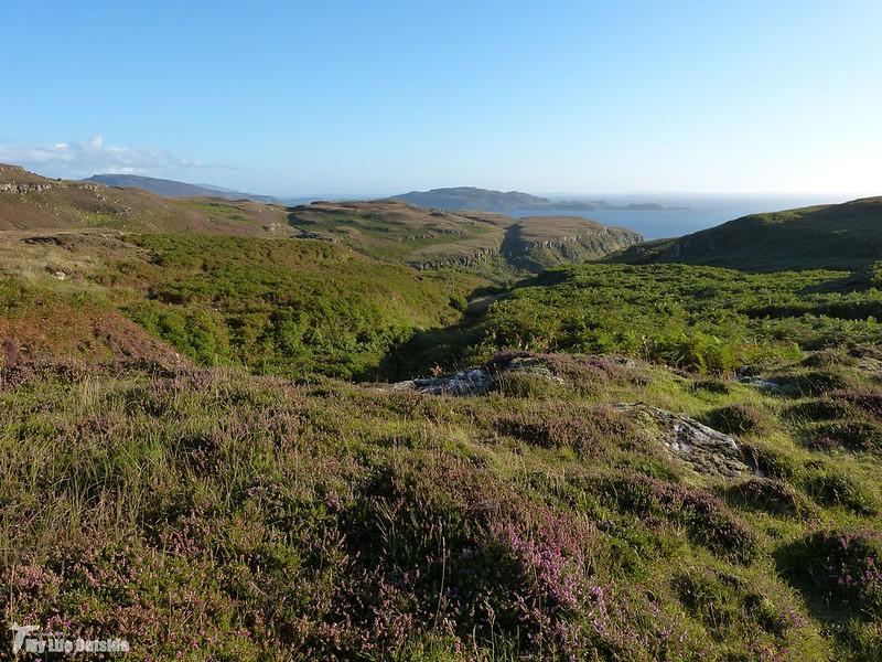 P1090046 - Isle of Mull