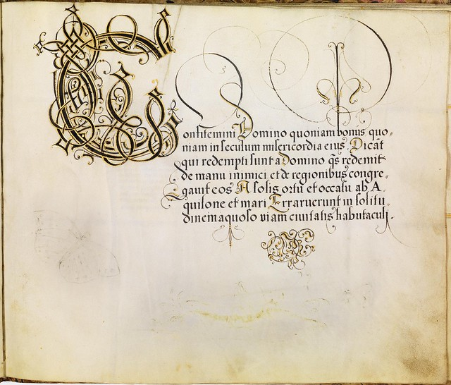 FJ Brechtel calligraphy 16th cent. i