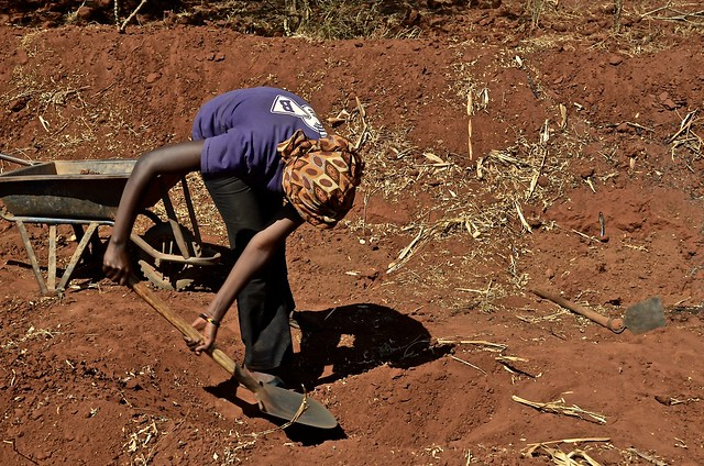 A young girl digs a 'zai pit' in order to improve the productivity of her family farm in Kitui County, eastern Kenya. Credit: Xavi Fernández de Castro/IPS