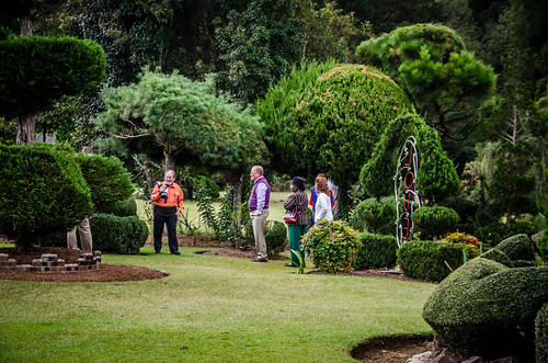 Pearle Fryer Topiary Garden-046