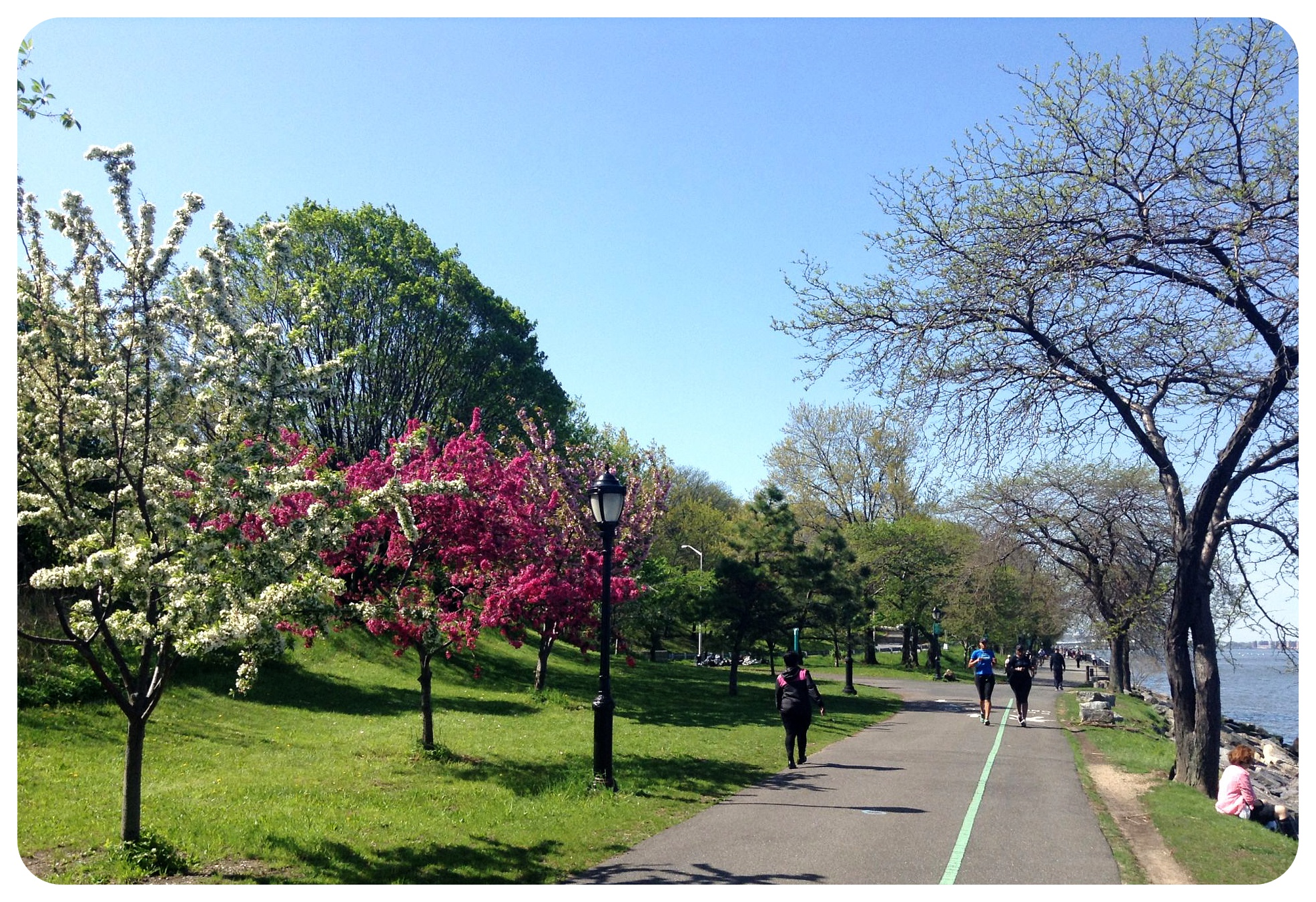hudson river cherry walk