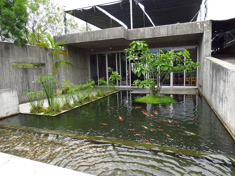勝洋水草餐廳 (1)