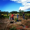 Volunteers pulling weeds in a coastal wetland out at Hickam this morning for Nat Public Lands Day.