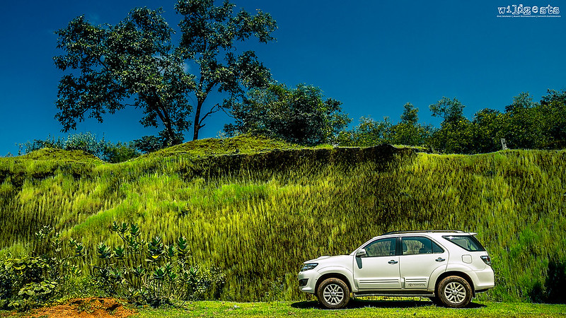 GreenFortuner