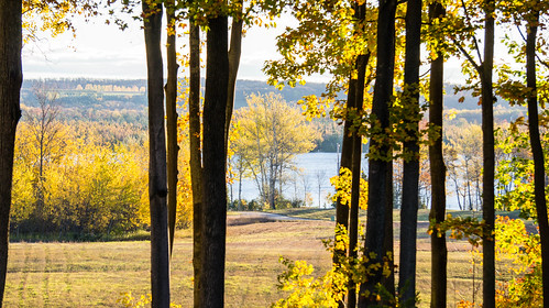 autumn leland lakeleelanau leelanaucounty