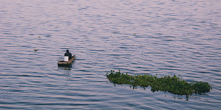 Fisherman on Lake Victoria