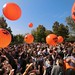 wefree day 2014 -10 Ottobre-