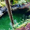 emerald opal pool #opalcreek #oregon