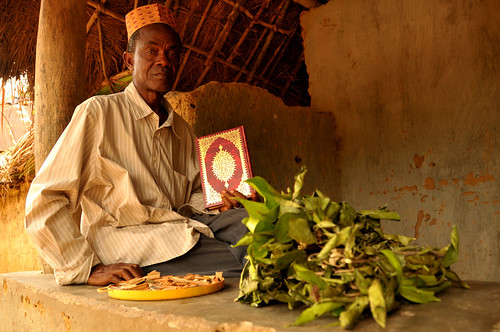 Community health and traditional healers in Sierra Leone | by Overseas Development Institute