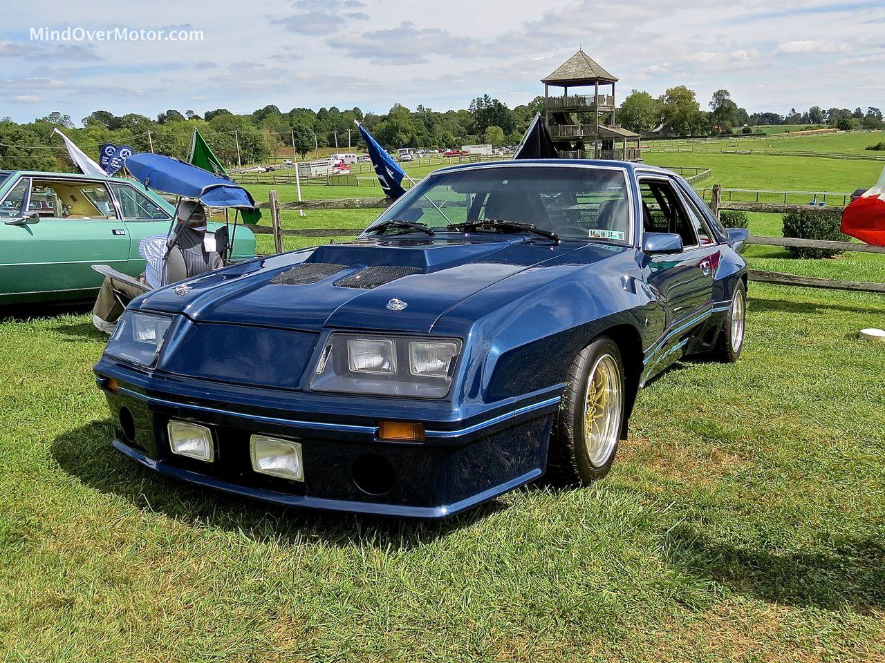IMSA Mustang Front Angle