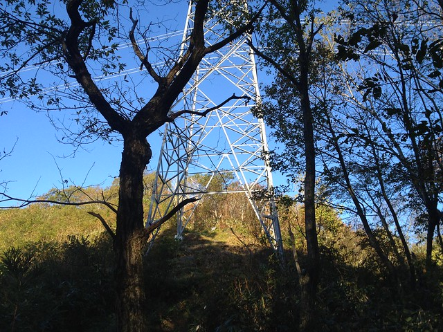 大日ヶ岳 ひるがの高原ルート 鉄塔