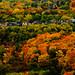 Toronto by Sandeep_Nigam