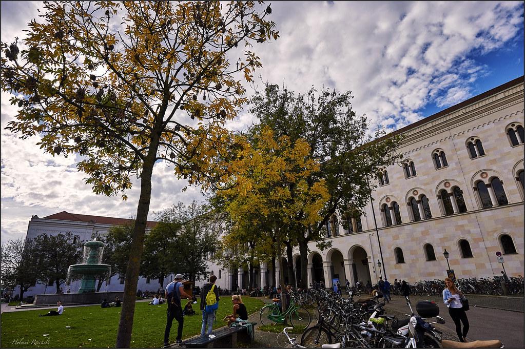 Herbst auf dem Campus