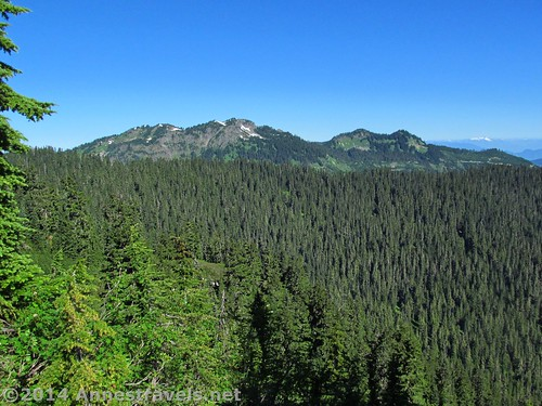 More views from where we ate lunch on the Canyon Ridge Trail, Mt. Baker-Snoqualmie National Forest, Washington