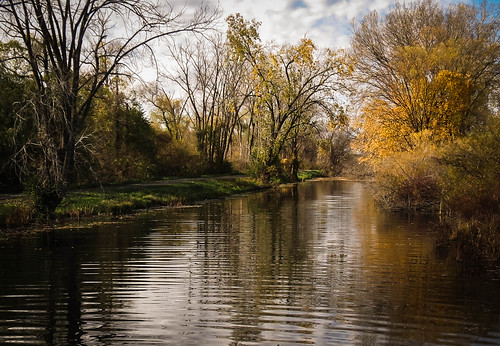 park autumn trees fall nature water minnesota creek landscape midwest scenery stream fallcolors scenic autumncolors winona