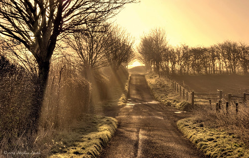 uk trees light england sunlight mist colour landscape golden march countryside spring nikon scenery northamptonshire earlymorning countrylane hdr sunbeams 2014 hedgerows grangeroad d80 geddington