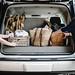 road trip: an appalachian picnic by Beth Kirby   {local milk}