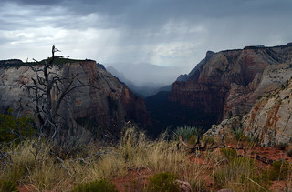 Zion National Park | by sharonjanssens