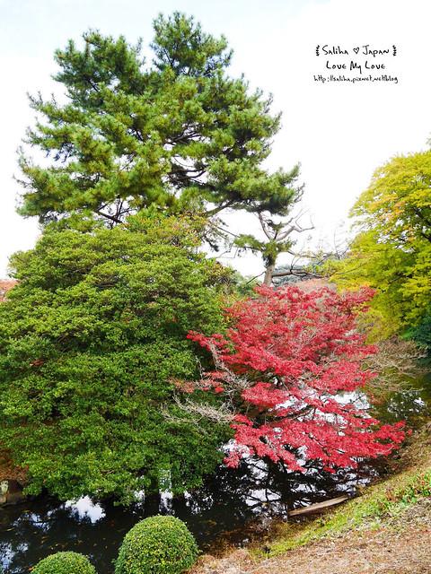 日本東京自由行新宿御苑庭園景點 (45)