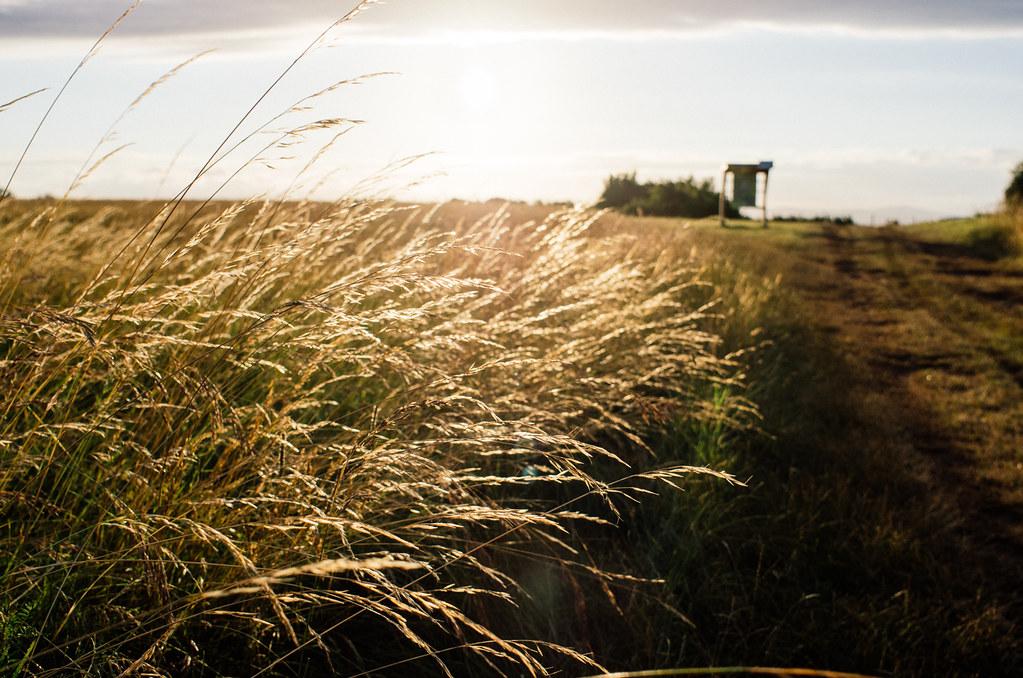 Sur les grands causses, champs d'éoliennes et camps militaires - Carnet de voyage France