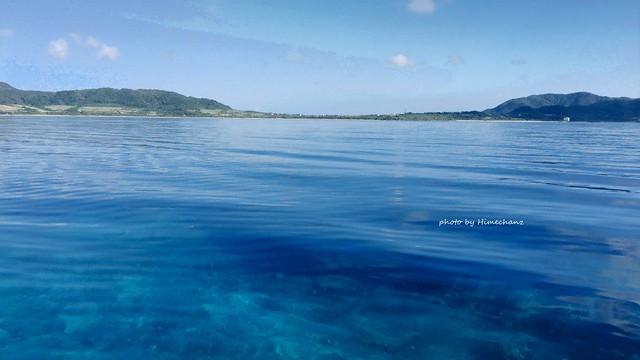 今日の名蔵湾はベタ凪&名蔵ブルーで水底が丸見え♪