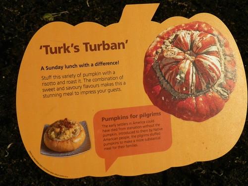 Turk's Turban