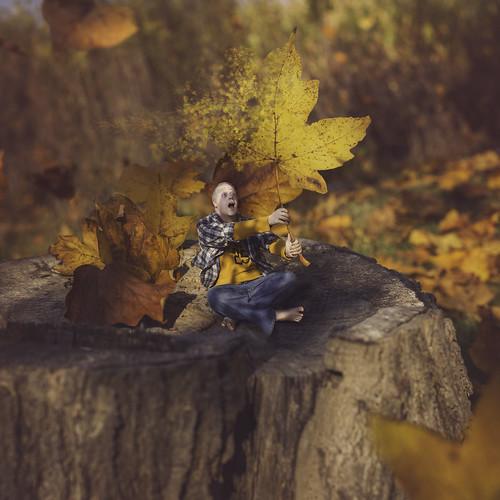 wood autumn boy red portrait orange man color tree leaves yellow composite photo leaf log nikon october media colorful kevin photographer social september stump mm 50 facebook 2014 everhart kje twitter d5200 instagram