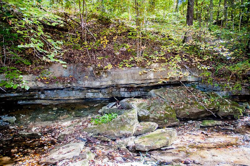 Mosquito Creek - Sally Reahard Woods - September 27, 2014