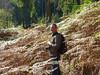 Bernd in the jungle :) by CASSIAN0001